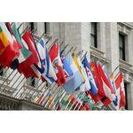 3 ft. x 5 ft. U.N. Member Flag Set For Outdoor Use