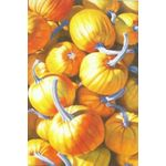 Pumpkins Decorative House Banner