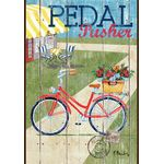 Rustic Pedal Pusher House Flag