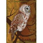 Night Owl House Flag