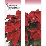 30 x 60 in. Holiday Banner Potted Poinsettias-Double Sided Design