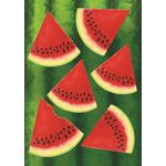 Watermelon Chill House Flag