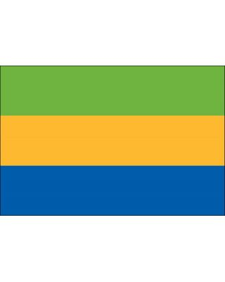 4ft. x 6ft. Gabon Flag for Parades & Display