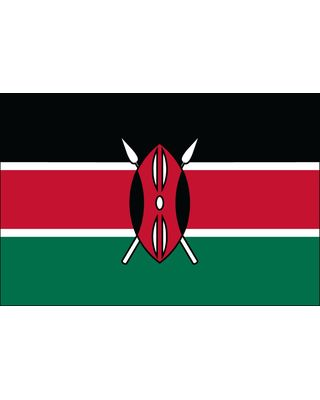 4ft. x 6ft. Kenya Flag for Parades & Display