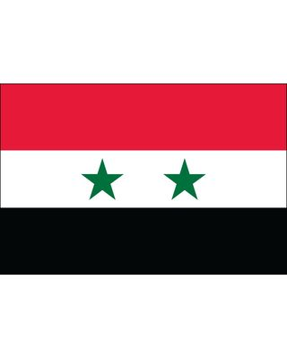 3ft. x 5ft. Syria Flag for Parades & Display