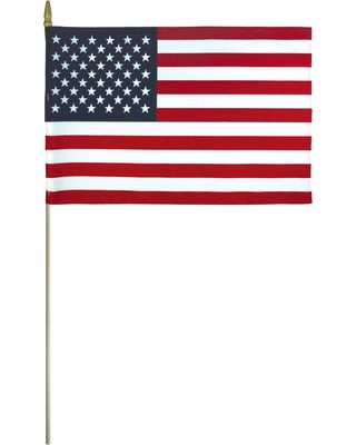 Cotton US Flag Mounted