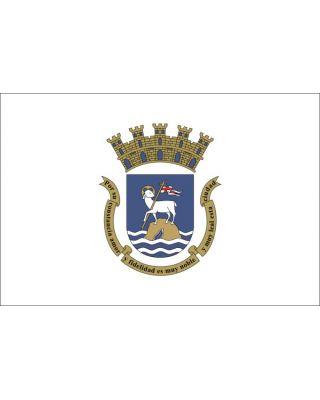 4 x 6ft. City of San Juan Flag