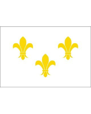 2 ft. x 3 ft. 3 Gold Fleur De Lis Flag w/ White Background