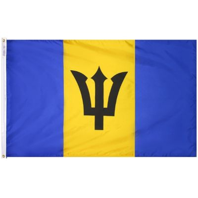 2ft. x 3ft. Barbados Flag with Canvas Header