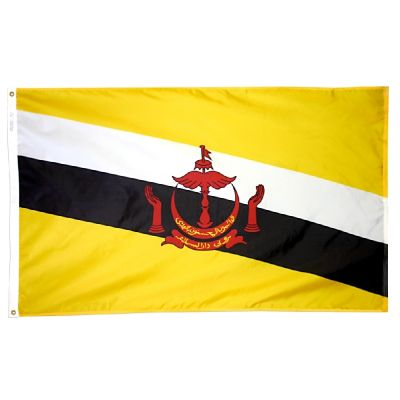 3ft. x 5ft. Brunei Flag with Brass Grommets