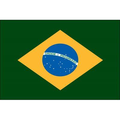 4ft. x 6ft. Brazil Flag for Parades & Display