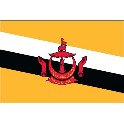 3ft. x 5ft. Brunei Flag for Parades & Display