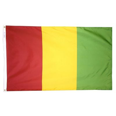 2ft. x 3ft. Guinea Flag with Canvas Header