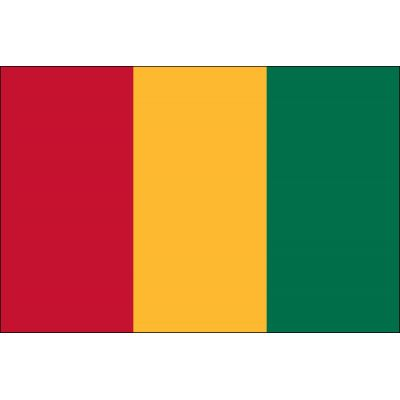 2ft. x 3ft. Guinea Flag for Indoor Display