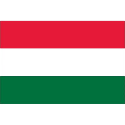 2ft. x 3ft. Hungary Flag for Indoor Display