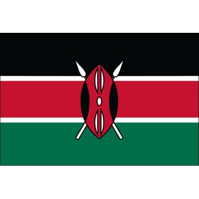 3ft. x 5ft. Kenya Flag for Parades & Display