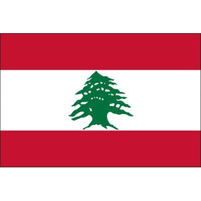 3ft. x 5ft. Lebanon Flag for Parades & Display