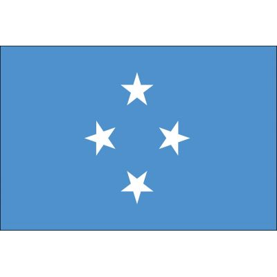 3ft. x 5ft. Micronesia Flag for Parades & Display
