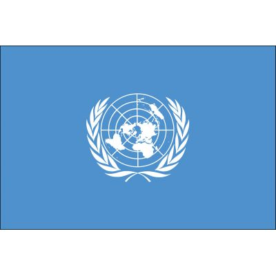 3ft. x 5ft. United Nations Flag with Brass Grommets