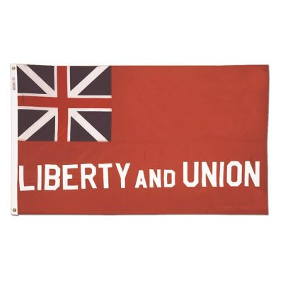 3ft. x 5ft. Taunton Flag with Gold Fringe for Parades & Display