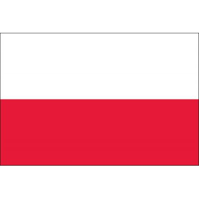 2ft. x 3ft. Poland Flag for Indoor Display