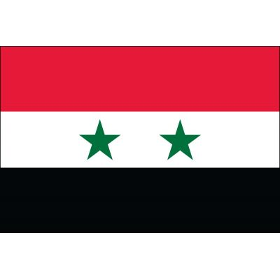 2ft. x 3ft. Syria Flag for Indoor Display