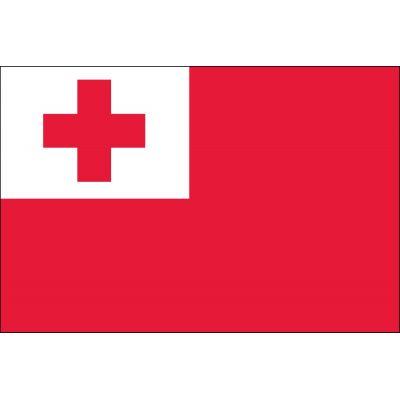 2ft. x 3ft. Tonga Flag Indoor Parade