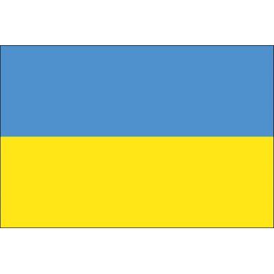 2ft. x 3ft. Ukraine Flag for Indoor Display