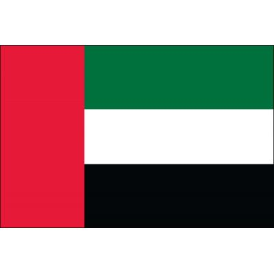 2ft. x 3ft. United Arab Emirates Flag for Indoor Display