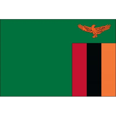 3ft. x 5ft. Zambia Flag for Parades & Display