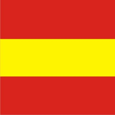 Size 6 Number 1 Signal Flag with Line Snap and Ring