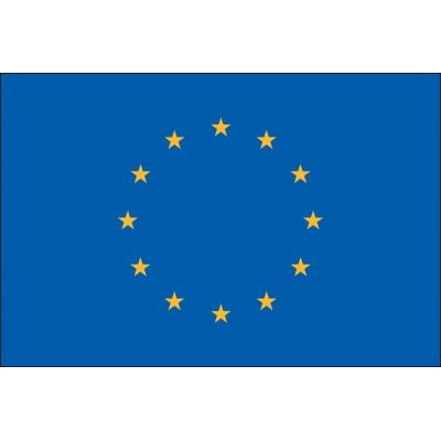 3ft. x 5ft. European Union Flag for Parades & Display