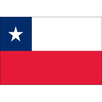 3ft. x 5ft. Chile Flag for Parades & Display