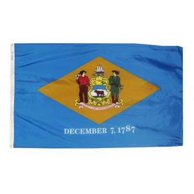 12 in. x 18 in. Delaware Flag with Brass Grommets