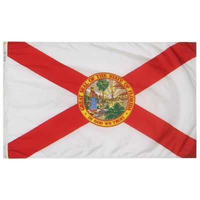 12 x 18 in. Florida flag