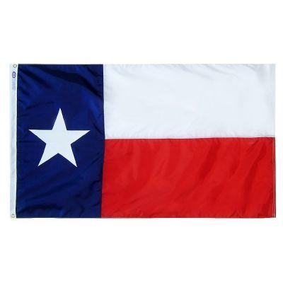 12 x 18 in. Texas flag