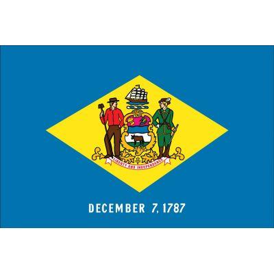 Delaware Flag Detail