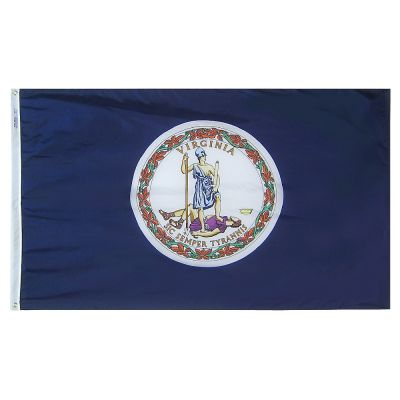 12 x 18 in. Virginia flag