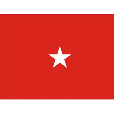 3ft. x 4ft. Army 1 Star General Flag Pole Sleeve