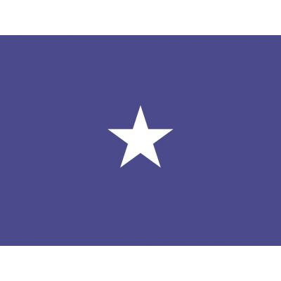 3ft. x 4ft. Air Force 1 Star General Flag w/ Side Pole Sleeve