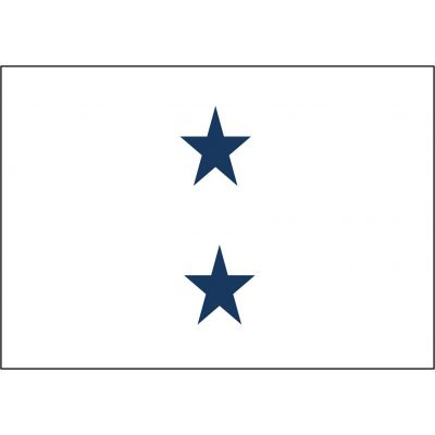 3ft. x 4 ft. Navy 2 Star Non-Seagoing Admiral Flag w/Grommets