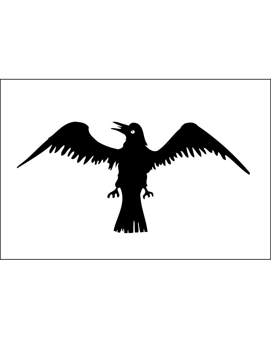 Raven Viking Indoor Outdoor Dyed Historical Nylon Flag 2/' X 3/'